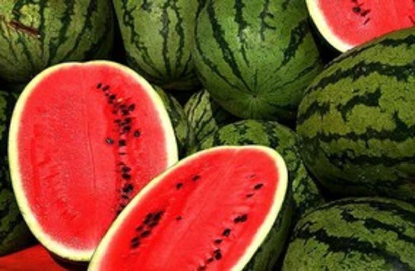 Watermelons 311 (photo credit: Wikimedia Commons)
