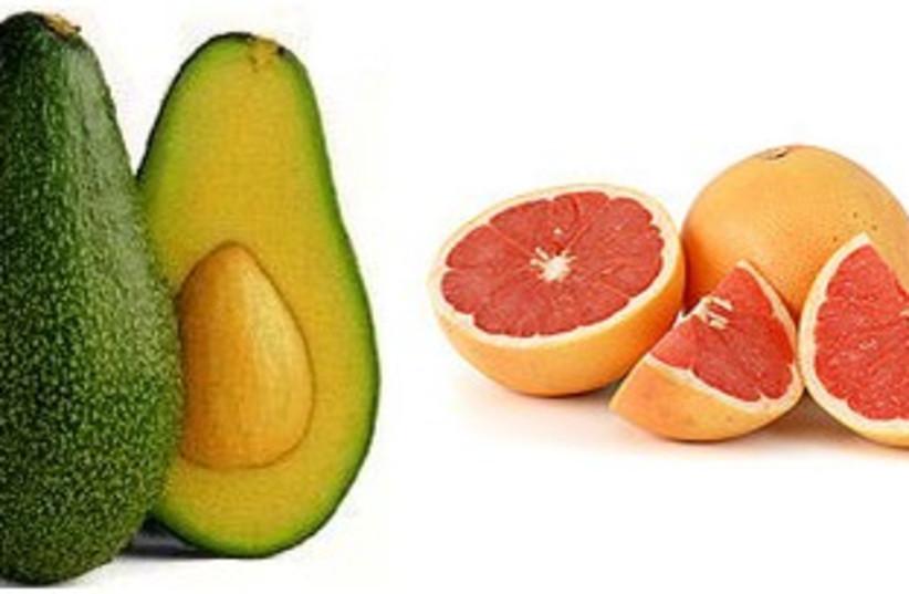 Avocado and grapefruit insert (photo credit: Courtesy)