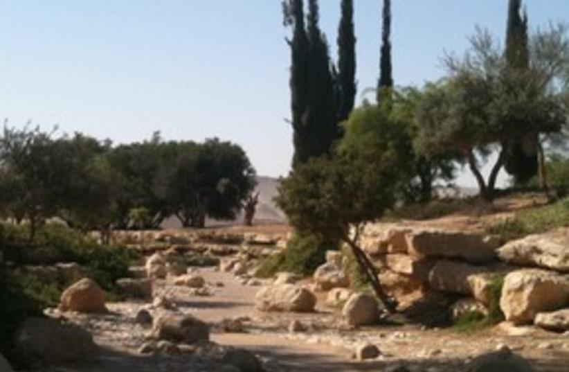 Negev desert 311 (photo credit: Joe Yudin)
