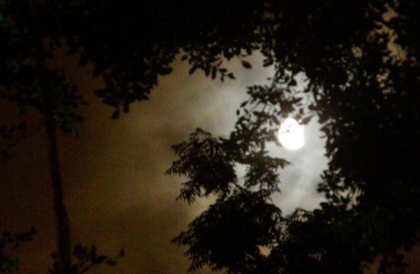The eclipse seen from Herzliya