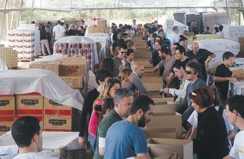 Food Aid 311 (photo credit: Leket)