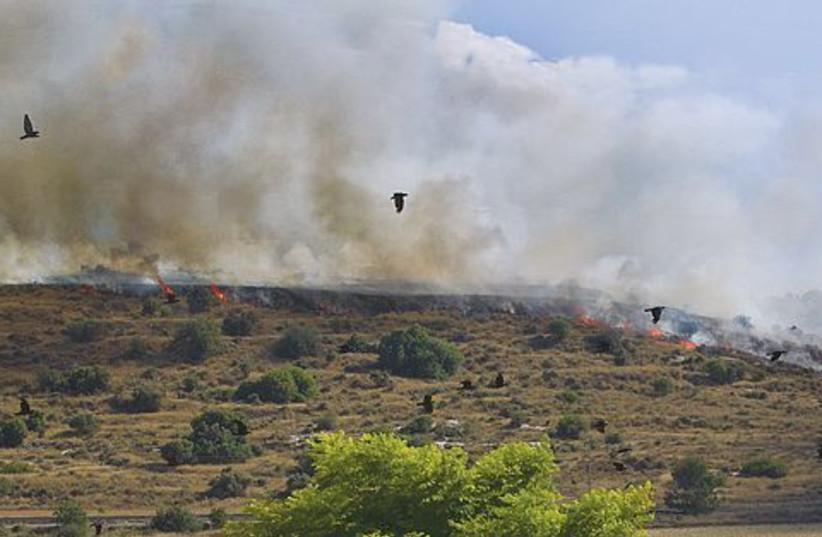 Burning farmland 521 (photo credit: Israel Weiss)