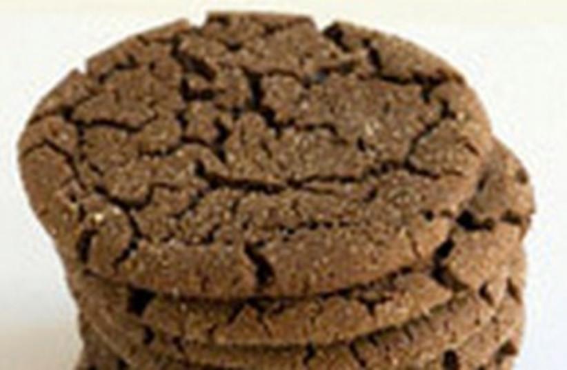 chocolate cookies 311 (photo credit: theppk.com)