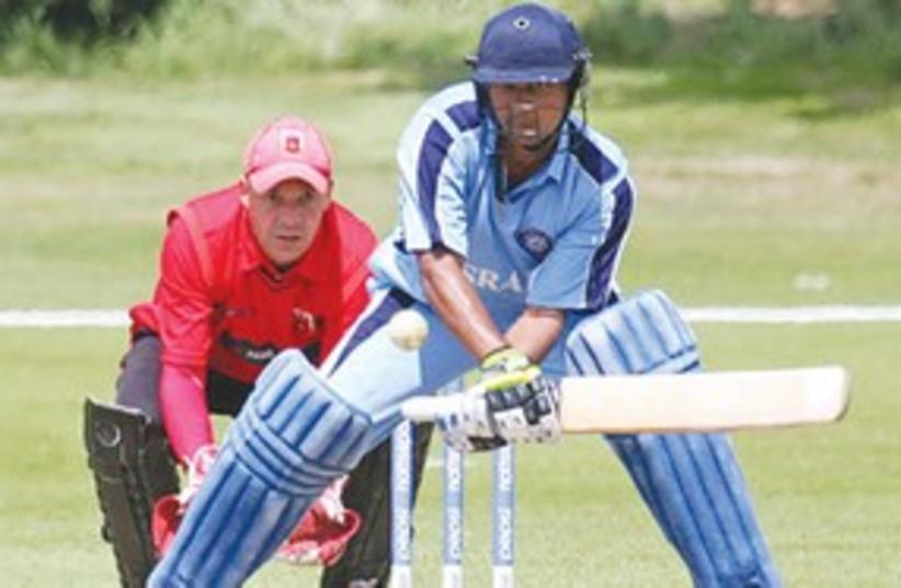 Cricket 311 (photo credit: Courtesy)