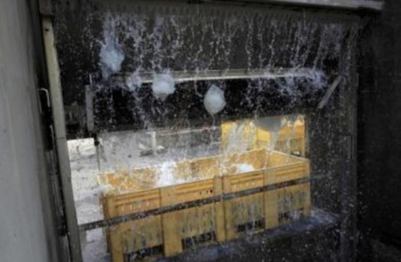 Jellyfish jam filters of Hadera power plant