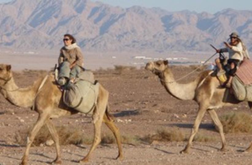 Desert311 (photo credit: Courtesy)
