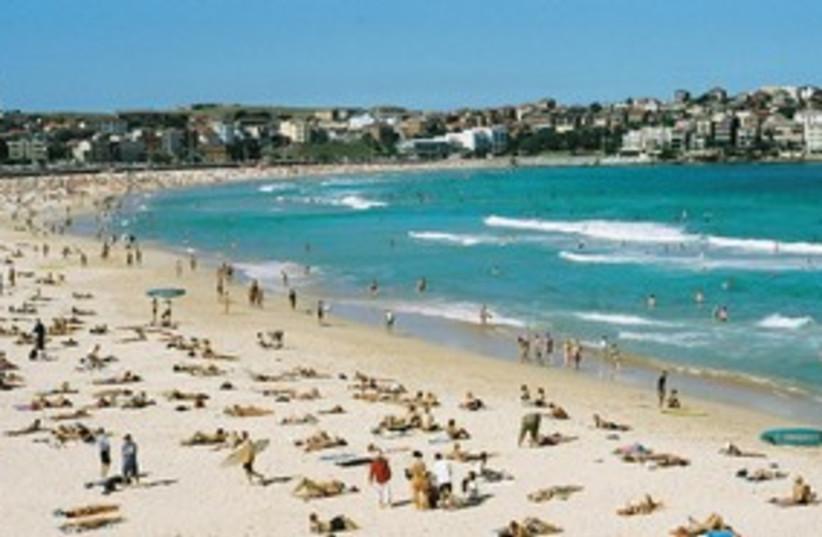 beach 311 (photo credit: Arthur Wolak)