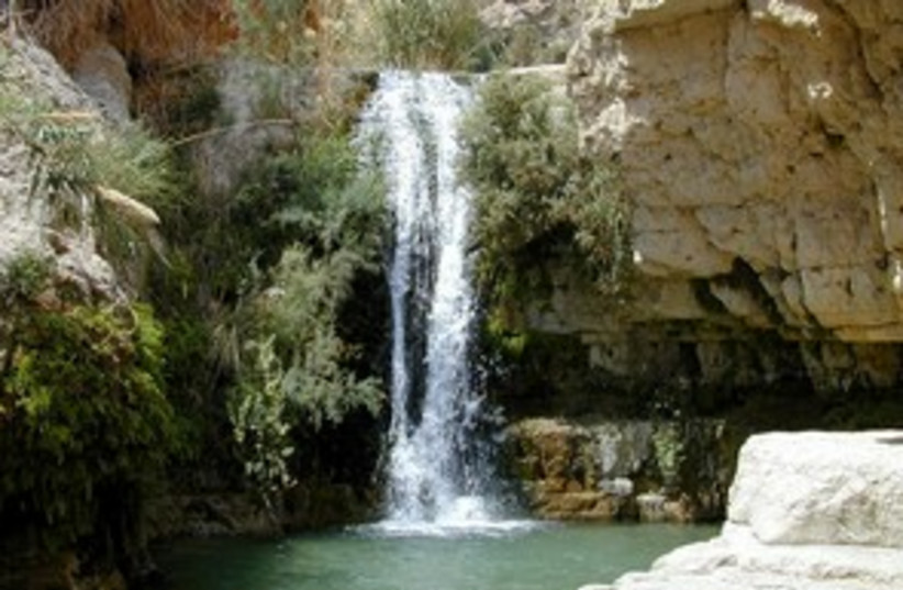 Ein Gedi hike 311 (photo credit: BiblePlaces.com)