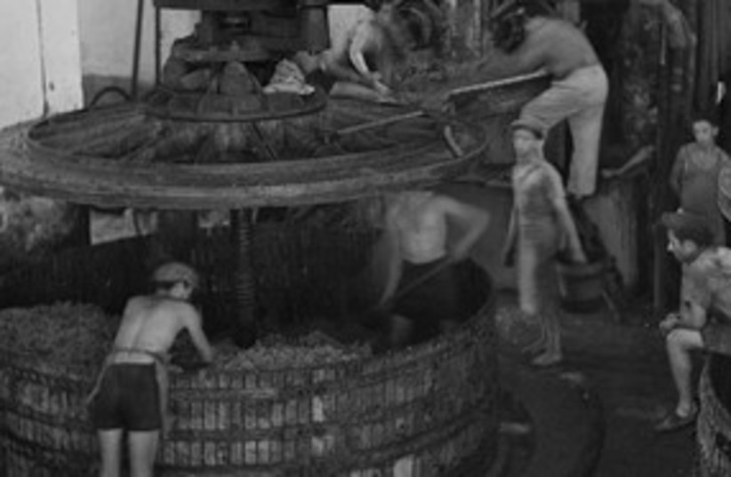 Wine press in Zichron, 1939