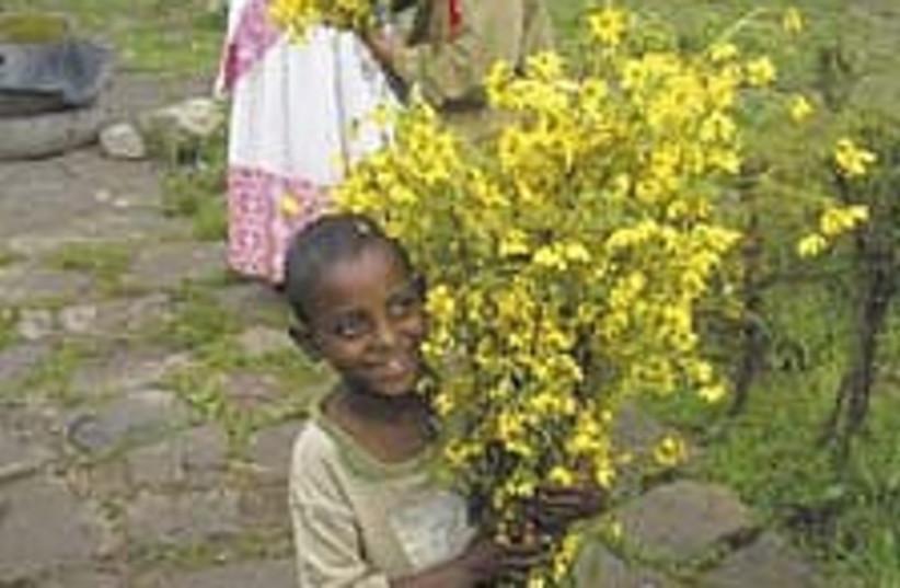 ethiopian 224.88 (photo credit: Courtesy)