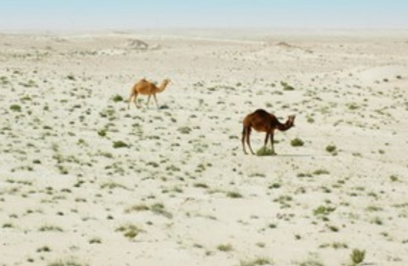 Qatar desert scape_311 (photo credit: Thinkstock/Imagebank)