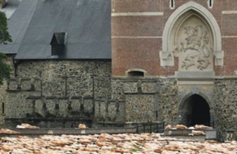 Belgium (photo credit: REUTERS)
