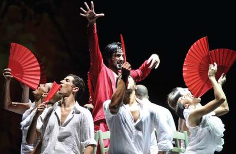 Flamenco in the desert 521 (photo credit: Courtesy)