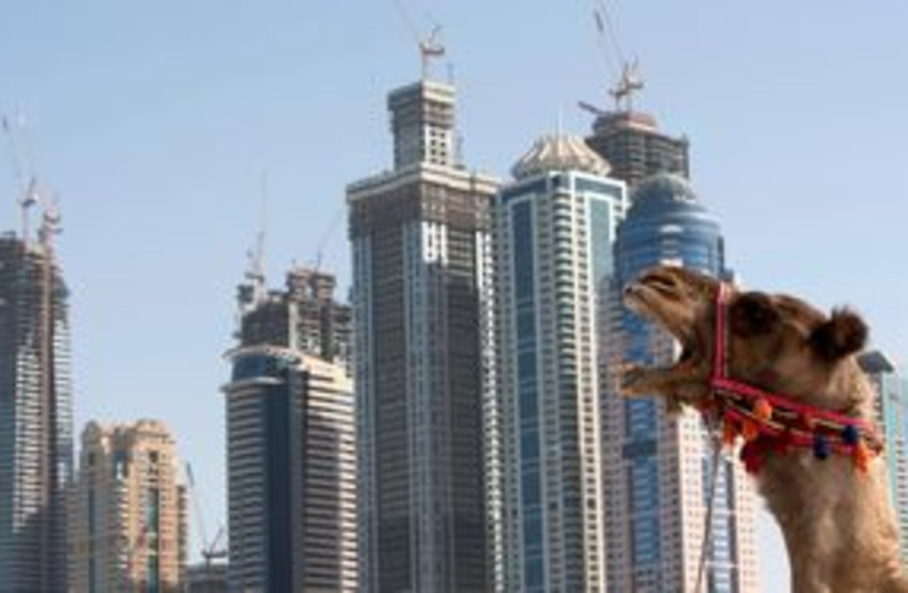 Construction in Dubai with camel yawn 311 (R) (photo credit: REUTERS/Steve Crisp)