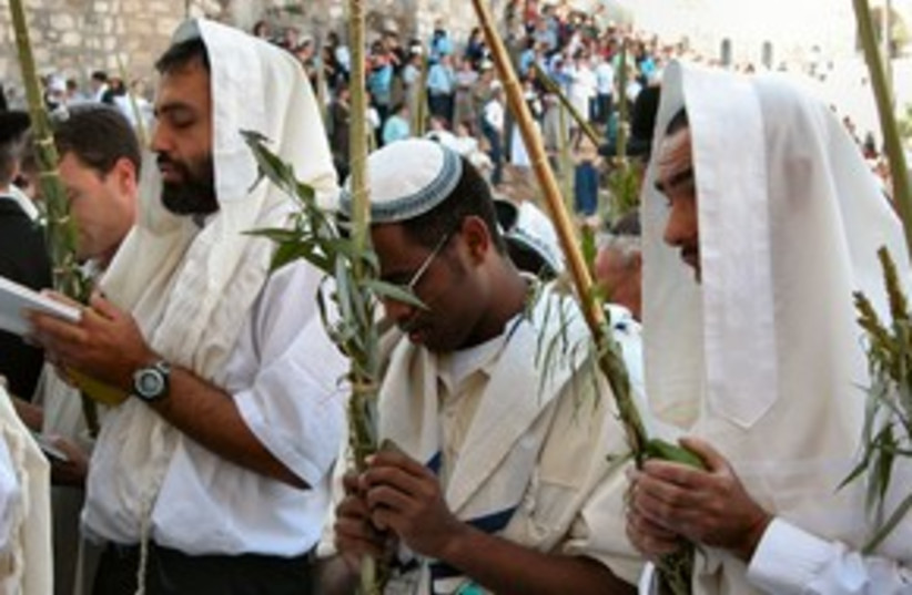 People pray at Kotel with lulav and etrog 311 (photo credit: BiblePlaces.com)