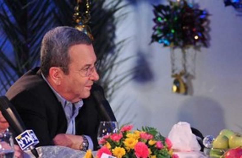Defense Minister Ehud Barak 311 (photo credit: Linoy Elihai / Defense Ministry)