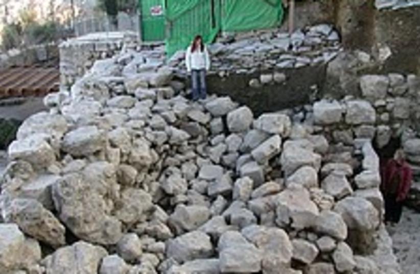 nehania wall 224 88 (photo credit: Courtesy)