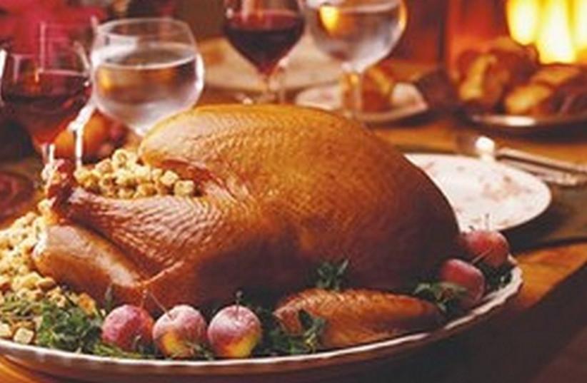 Thanksgiving turkey 521 (photo credit: Courtesy)