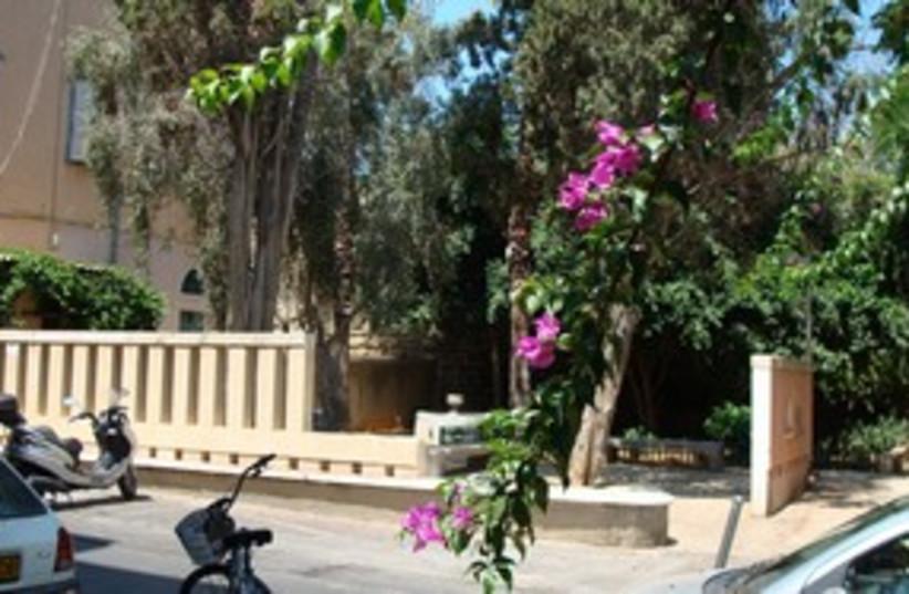 Jaffa real estate 311 (photo credit: Lyle Plocher)