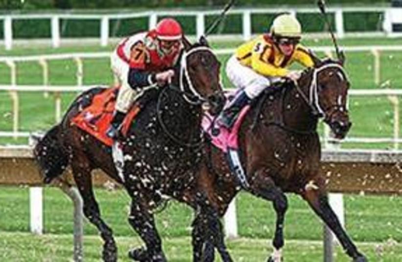 horse racing (photo credit: horsracing.com)