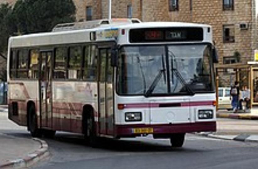 egged bus 224.88 (photo credit: Ariel Jerozolimski)