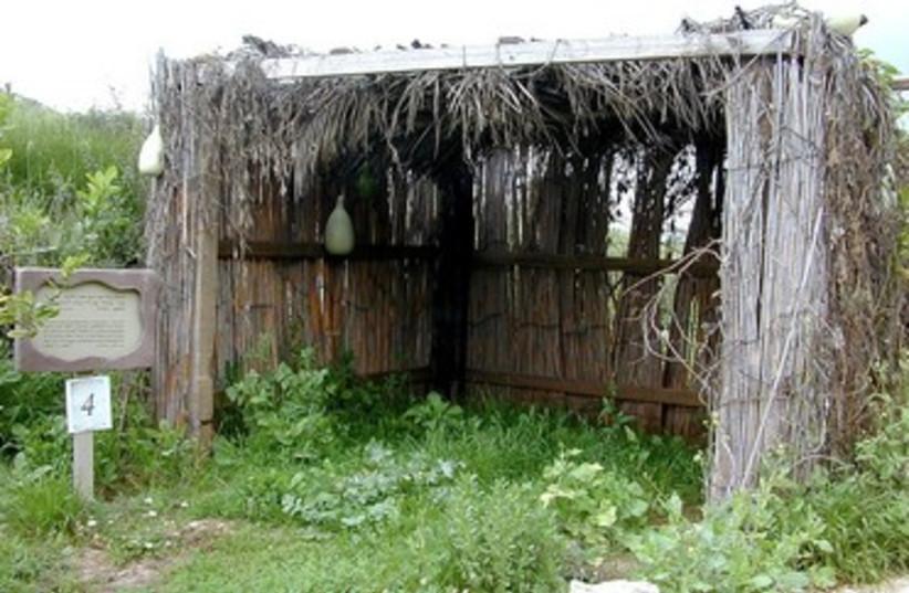 Succa at Neot Kedumim (photo credit: BiblePlaces.com)
