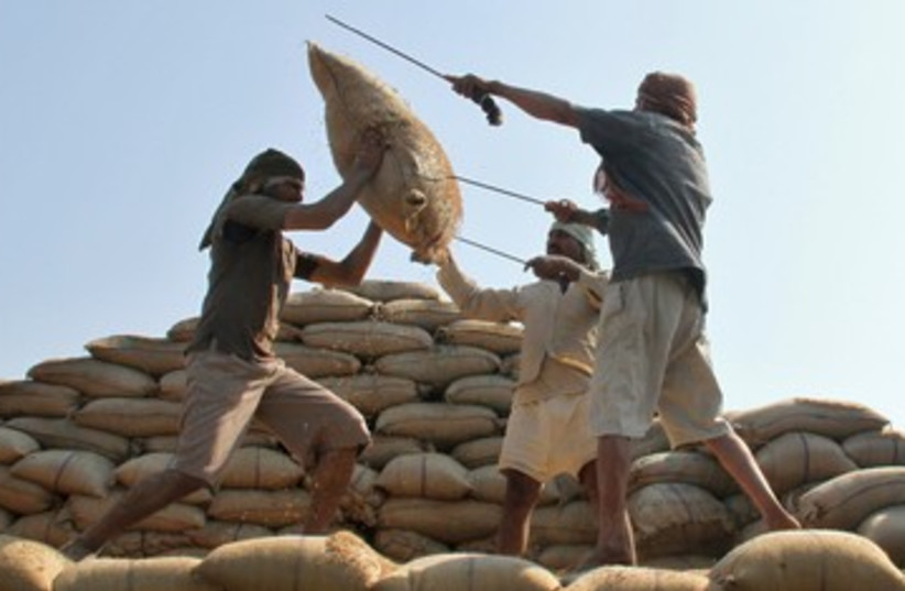 Rice ban (illustrative) (photo credit: REUTERS/Ajay Verma)