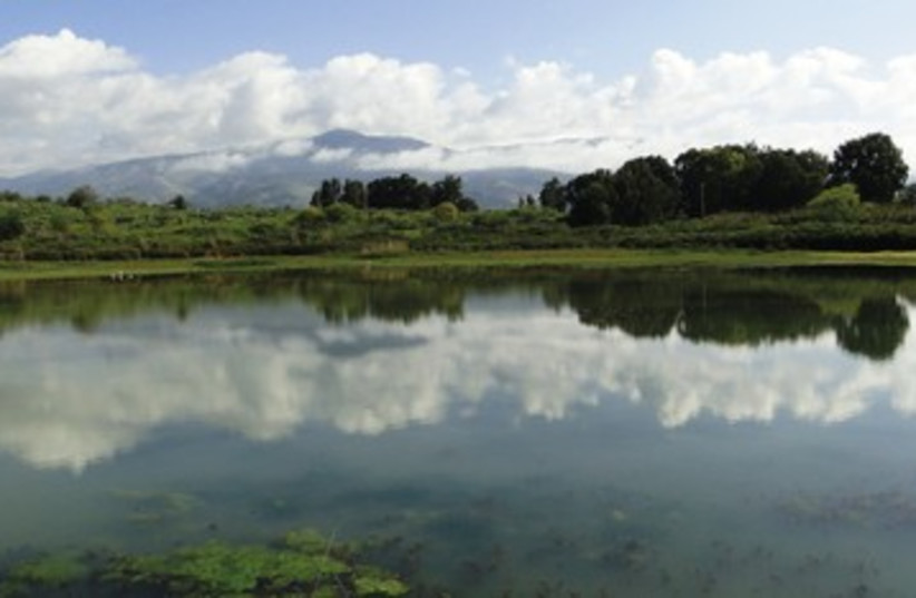 Tapline reservoir at Snir Nature Park 390 (photo credit: Doron Nissim/INPA)
