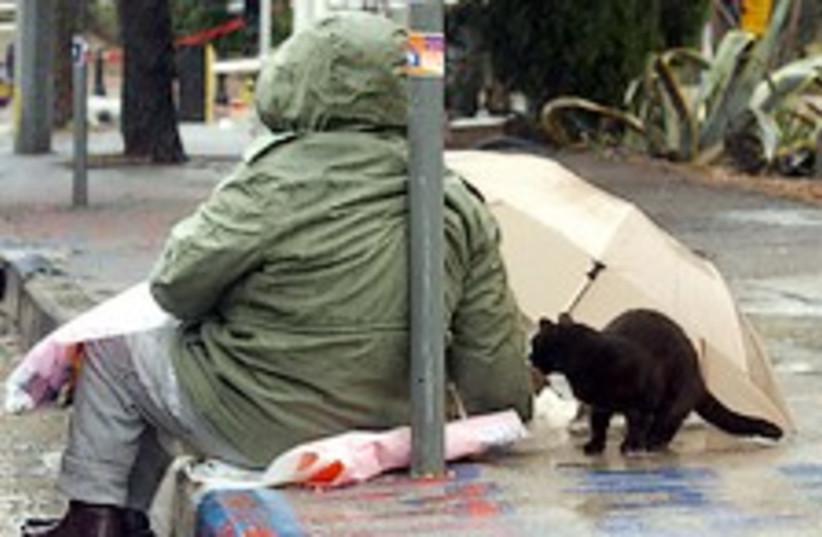 poor man rain 224.88 (photo credit: Ariel Jerozolimski )