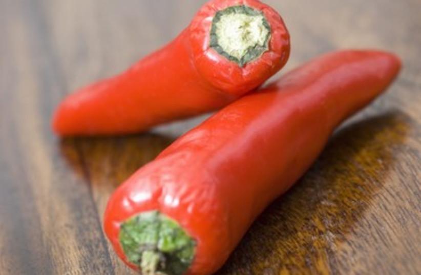 chili pepper 370 (photo credit: Thinkstock/Imagebank)
