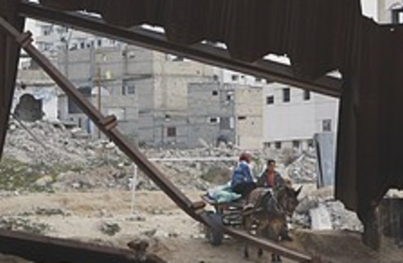 donkey Rafah 224.88 (photo credit: AP [file])