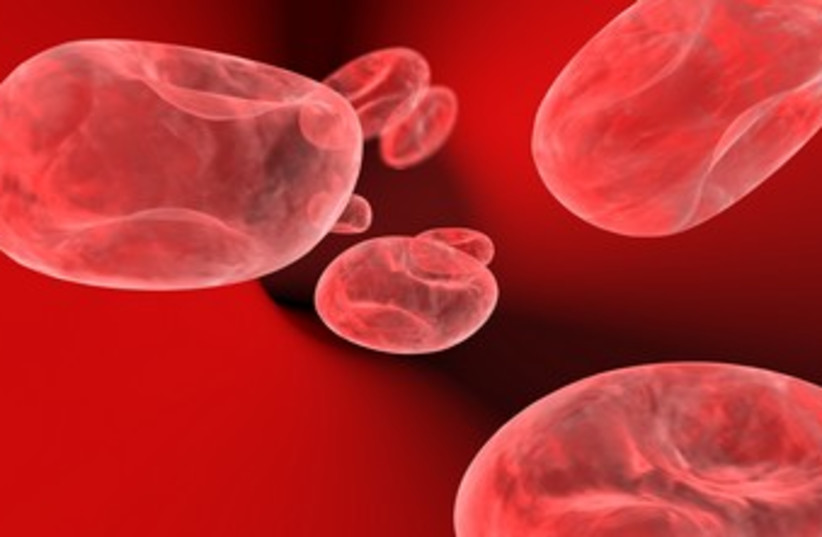 Blood cells (photo credit: Thinkstock/Imagebank)