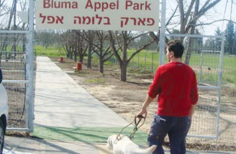Blind man with seeing eye dog 521 (photo credit: Courtesy IGDCB)