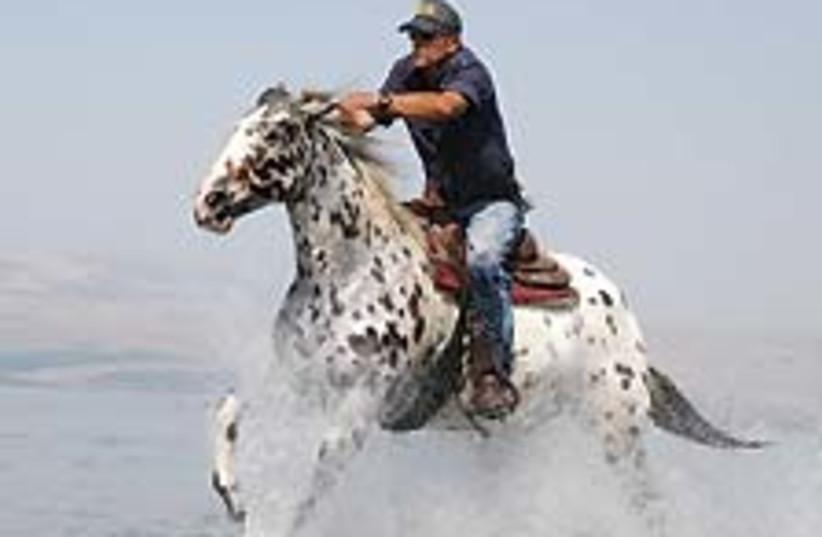 horse ride 88 224 (photo credit: Courtesy)