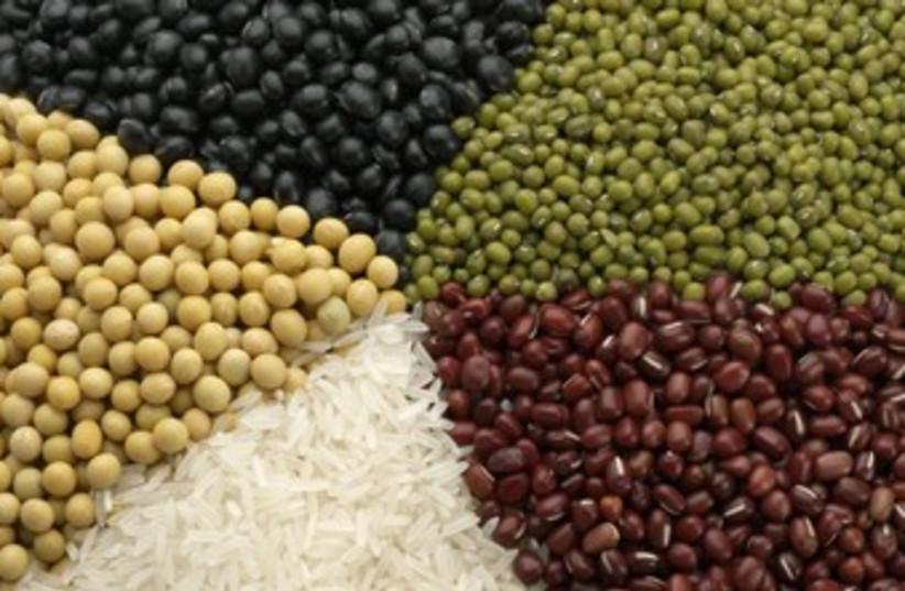 Variety of grains 370  (photo credit: Thinkstock/Imagebank)