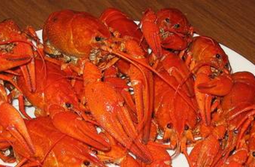 Boiled Crayfish 370 (photo credit: wikicommons)