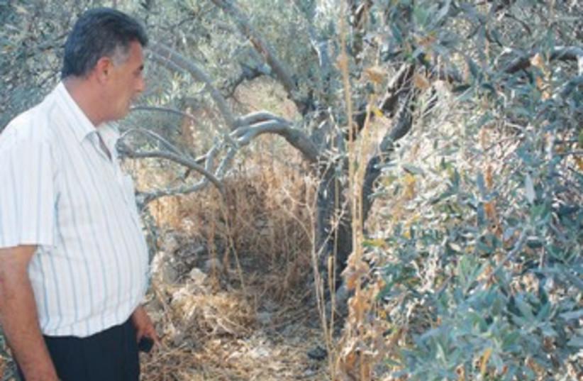 MUHAMMAD SARSUR looks at spot where boy's body was found 370 (photo credit: Ben Hartman)