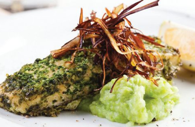 Fillet of Salmon on a Bed of Green Mashed Potatoes (photo credit: Daniel Layla)