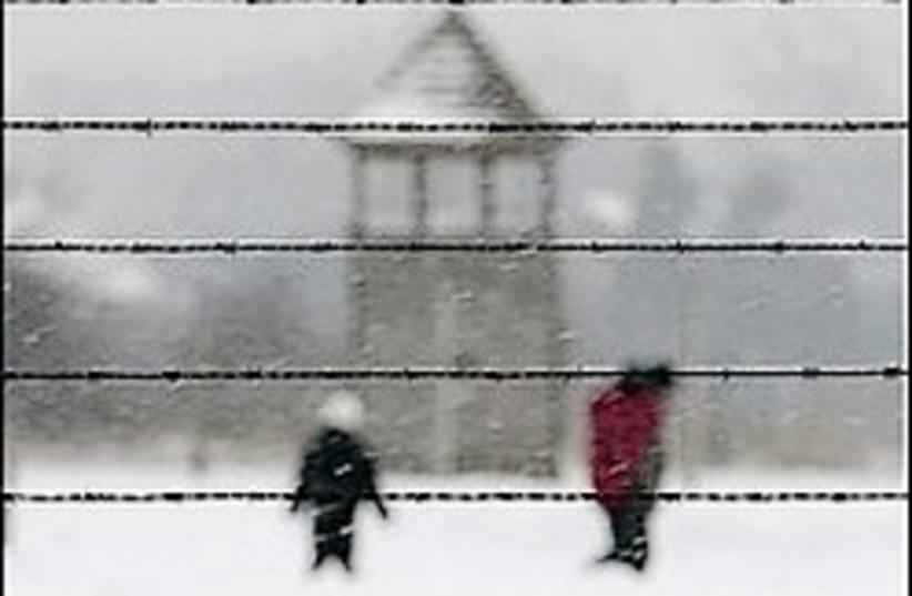 Auschwitz 224.88 (photo credit: AP)