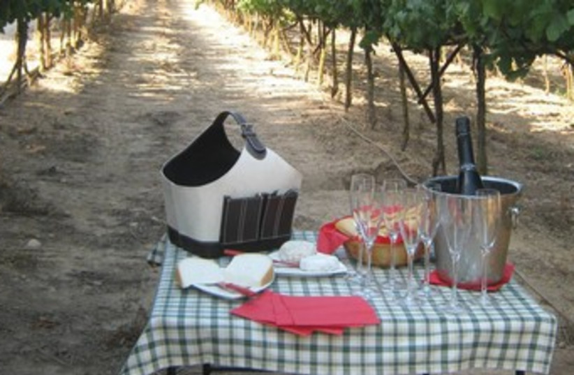 Wine and cheese in nature 370 (photo credit: Courtesy)