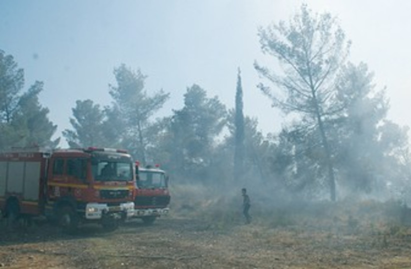 Jerusalem firefighters battle wildfire 370 (photo credit: Fire Department)