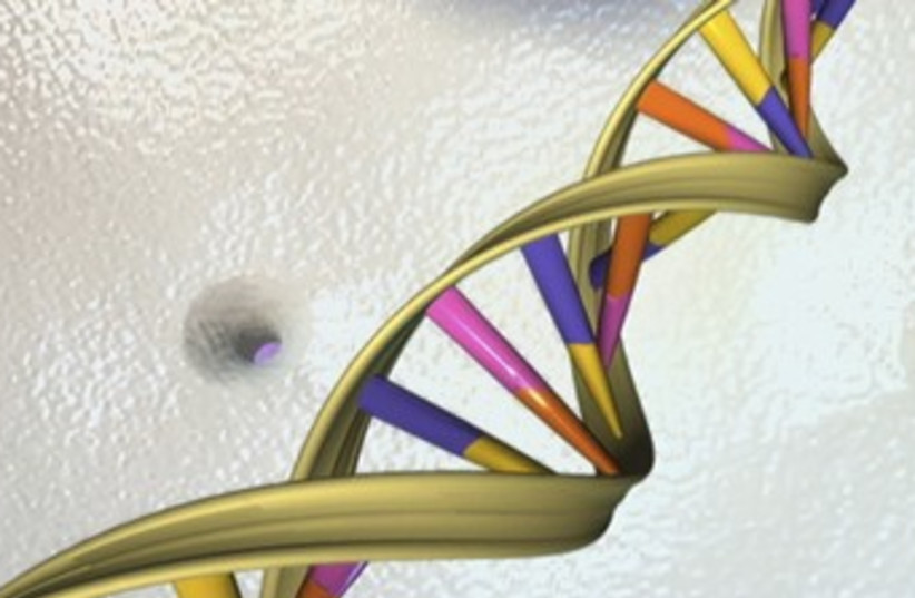 DNA (photo credit: REUTERS)