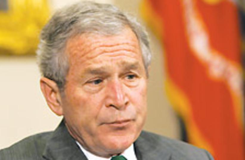 W. Bush grey  88 224 (photo credit: )
