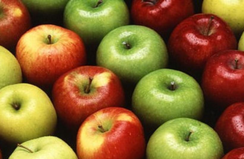 Apples (photo credit: Wikicommons)