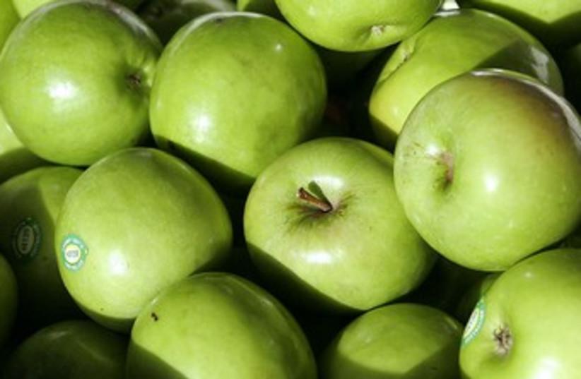 Apples 370 (photo credit: Wikicommons)