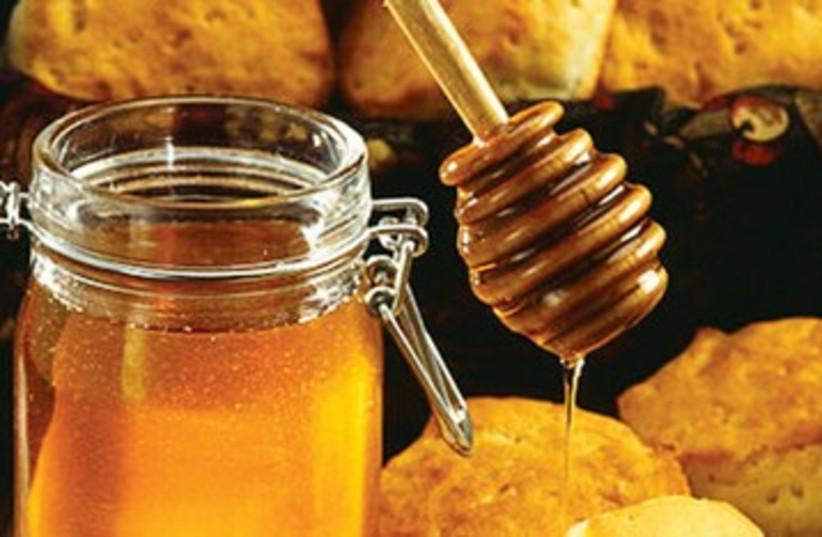 Honey 390 (photo credit: Wikimedia)