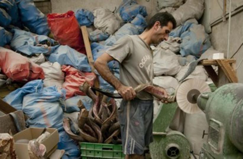The BarSheshet-Ribak Shofar factory 390 (photo credit: Hadas Parush)