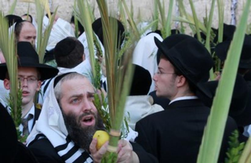 Hoshana Raba 390 4 (photo credit: Marc Israel Sellem/The Jerusalem Post)