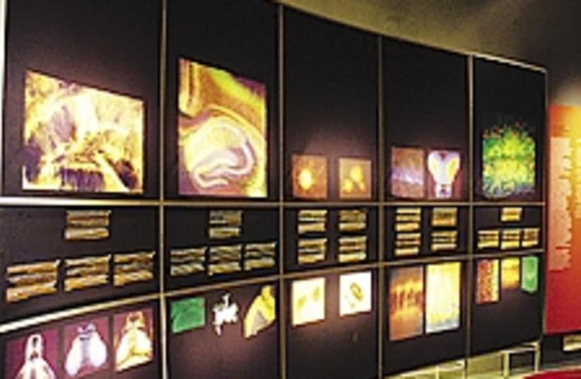 brain scans 224.88 (photo credit: Judy Siegel-Itzkovich)