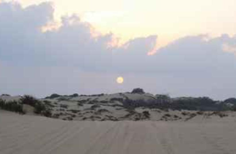 Nitzanim Beach (photo credit: www.goisrael.com)